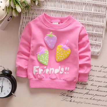 Pink Baby Toddler Girl Spring,Fall Pullover